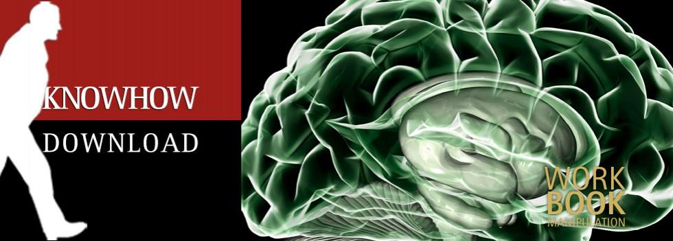 Das Gehirn – Einführung für Schüler