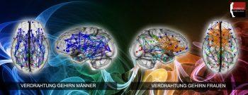 Gehirn ist nicht gleich Gehirn