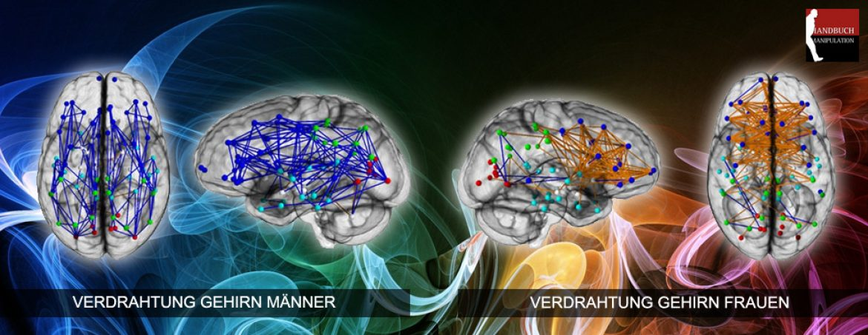 Hirnforschung: neuronale Verdrahtung