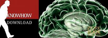 Das Gehirn - ein Schulbuch